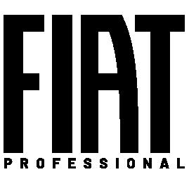 Fiat Professional Georgia